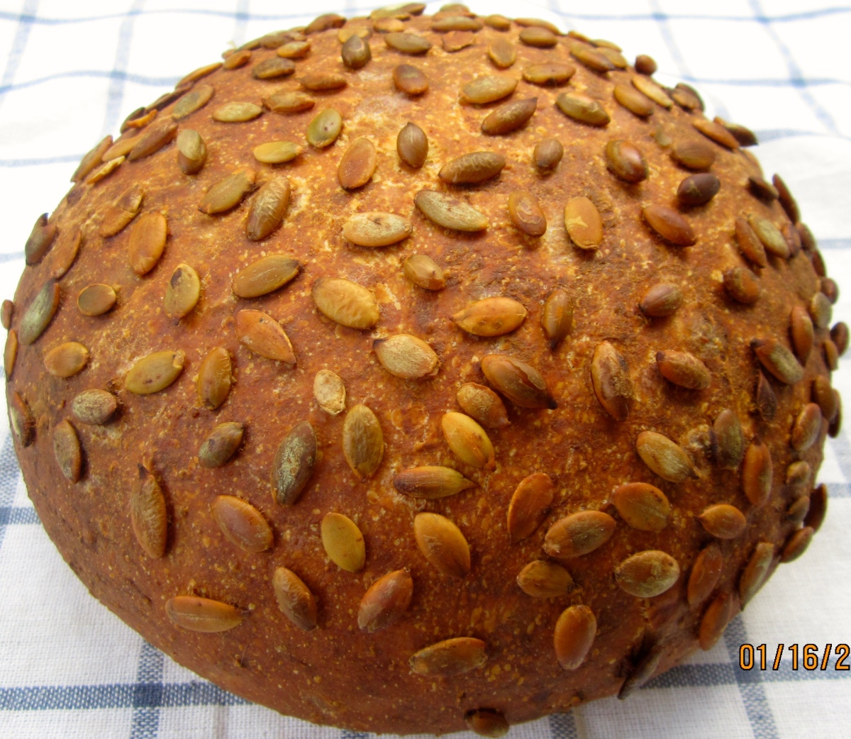 SENFBROT - MUSTARD CHEESE BREAD